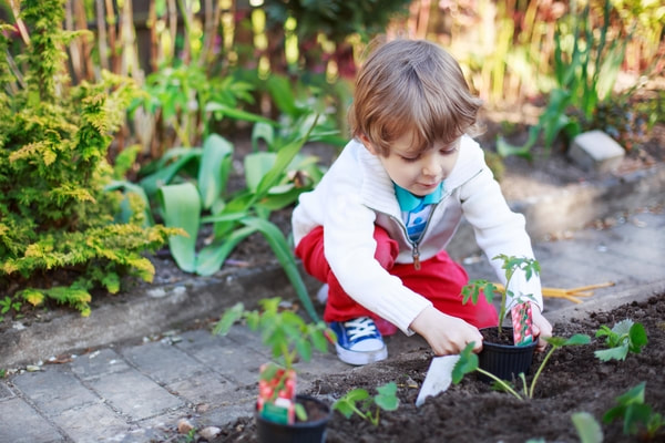 young boy sitting on concrete walkway as he plants vegetables in the backyard garden
